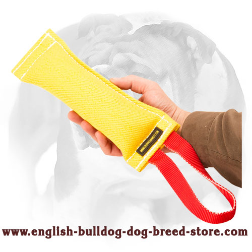 English Bulldog durable French linen bite tug for puppy training and playing