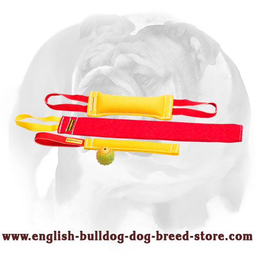 Set of French linen tugs for English Bulldog bite training