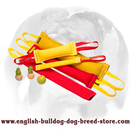 Soft set of bite tugs with handles for training English Bulldog