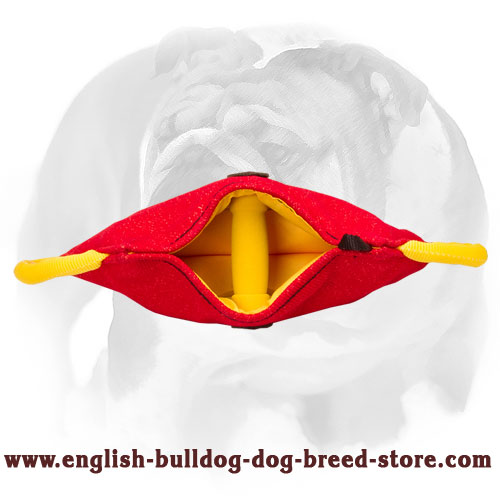English Bulldog strong bite builder for puppies