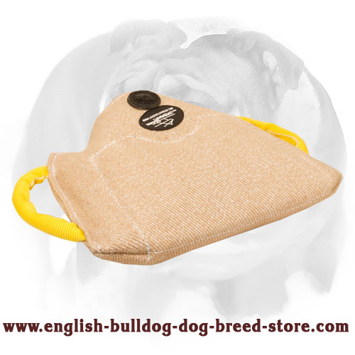 English Bulldog Jute bite builder for training puppies