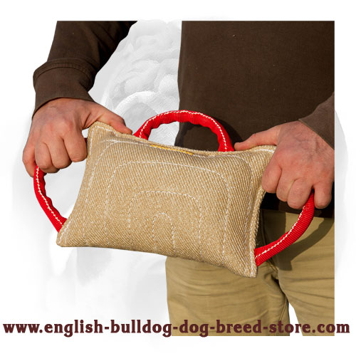 English Bulldog bite pad with strong handles for training
