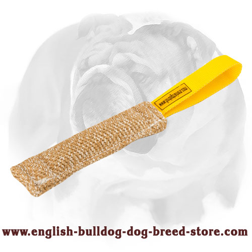 English Bulldog Jute puppy tug for bite training