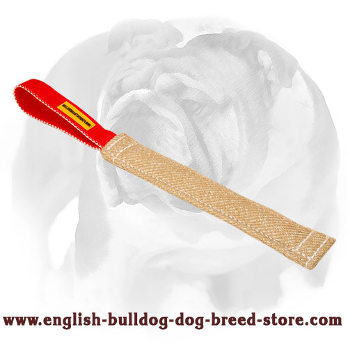 Jute bite tug for training English Bulldog puppies