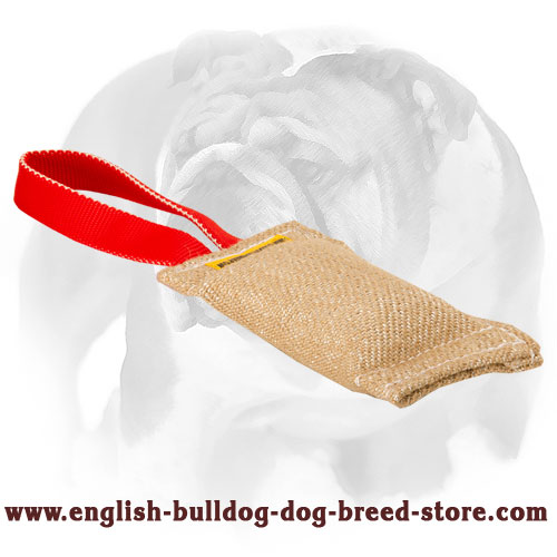English Bulldog strong Jute puppy tug with nylon handle for training