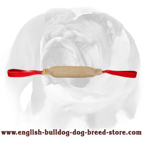 English Bulldog durable Jute tug for puppy bite training
