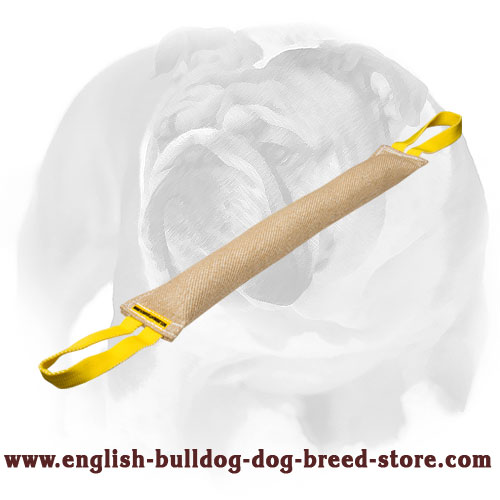 Jute bite tug with for training English Bulldog