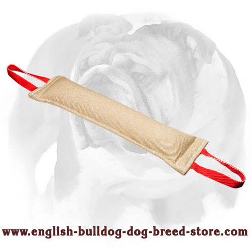 Jute tug with handles for English Bulldog bite training