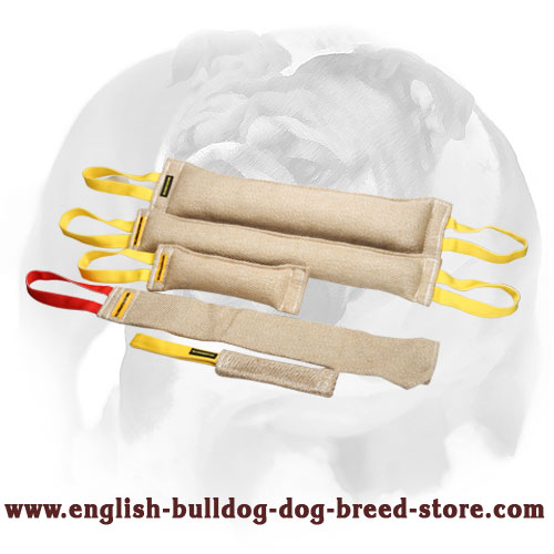 Sturdy Jute bite tugs with handles for training English Bulldog