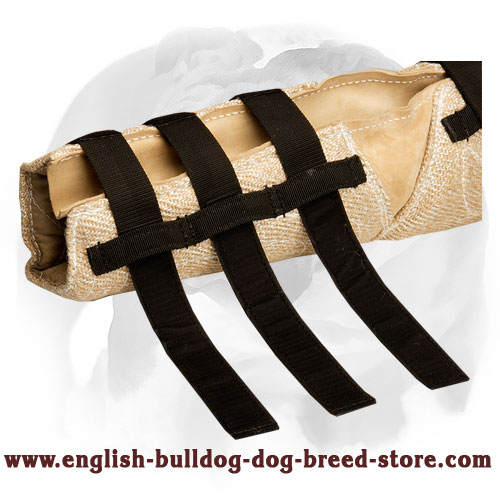 English Bulldog jute dog hidden protection sleeve for bite training