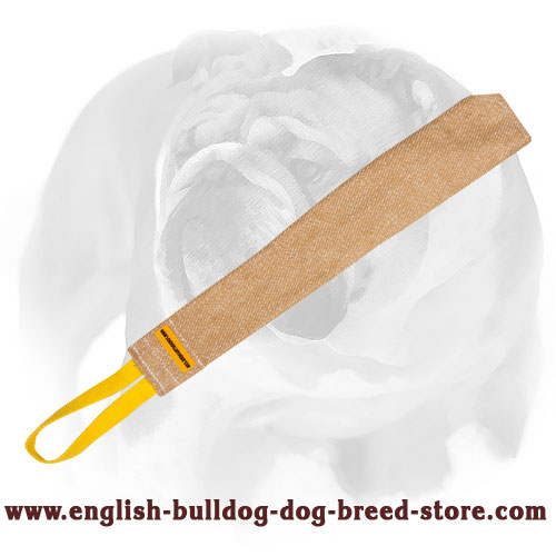 Jute English Bulldog puppy bite rag for prey drive training