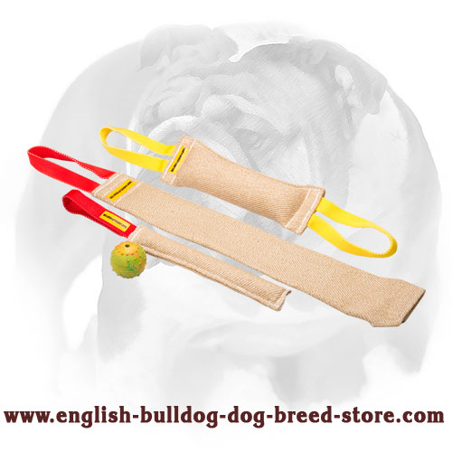 Set of bite tugs with handles for training English Bulldog