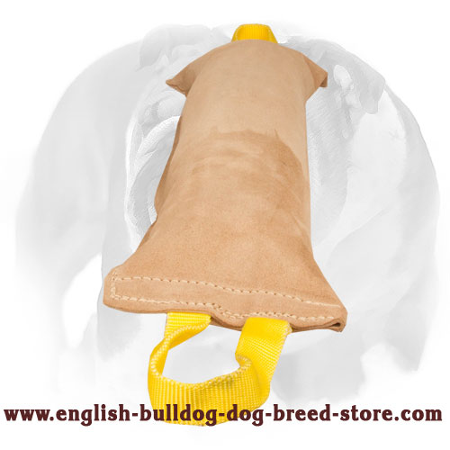 Durable leather tug for English Bulldog bite training