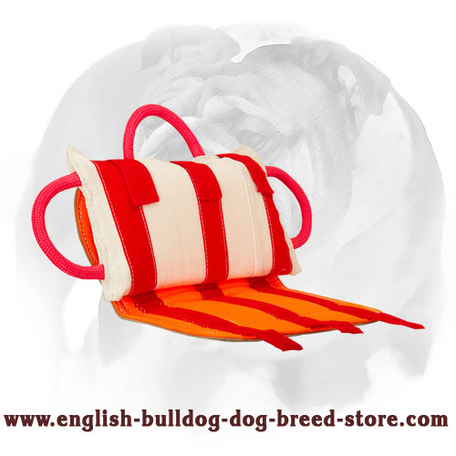 Leather covered bite pillow with 3 strong handles for training English Bulldog