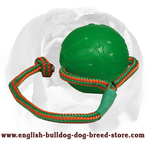 English Bulldog rubber ball for different activities
