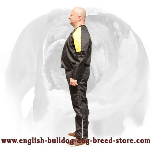 Strong scratch suit for English Bulldog training