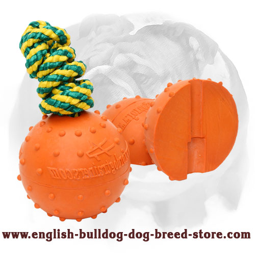 English Bulldog water rubber ball with dots for massaging gums
