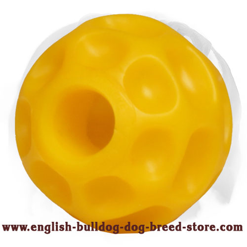 English Bulldog interactive toy for mental and physical stimulation