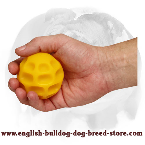 English Bulldog treat dispenser ball for different activities