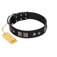"""Foregone Riches"" FDT Artisan Black Leather English Bulldog Collar with Old Silver-like Square Studs and Pyramids"