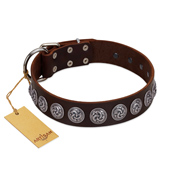 """Charming Circles"" FDT Artisan Brown Leather English Bulldog Collar with Silver-like Studs"