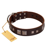 """Object of Virtu"" FDT Artisan Brown Leather English Bulldog Collar with Old Silver-like Square Studs and Pyramids"