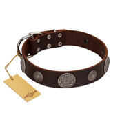 """Flashy Woof"" FDT Artisan Brown Leather English Bulldog Collar with Chrome Plated Brooches"