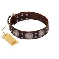 """Imperial Legate"" FDT Artisan Brown Leather English Bulldog Collar with Big Round Plates"