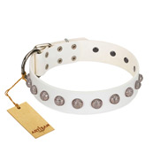 """Grandeur Dog"" FDT Artisan White Leather English Bulldog Collar with Engraved Studs"