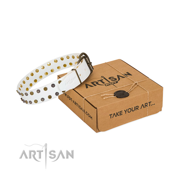 Extraordinary full grain natural leather dog collar with rust resistant embellishments