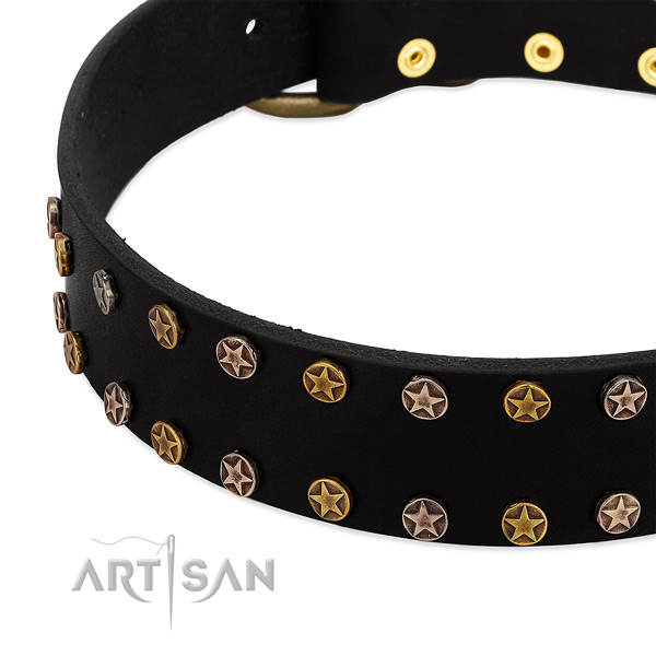 Amazing embellishments on natural leather collar for your canine