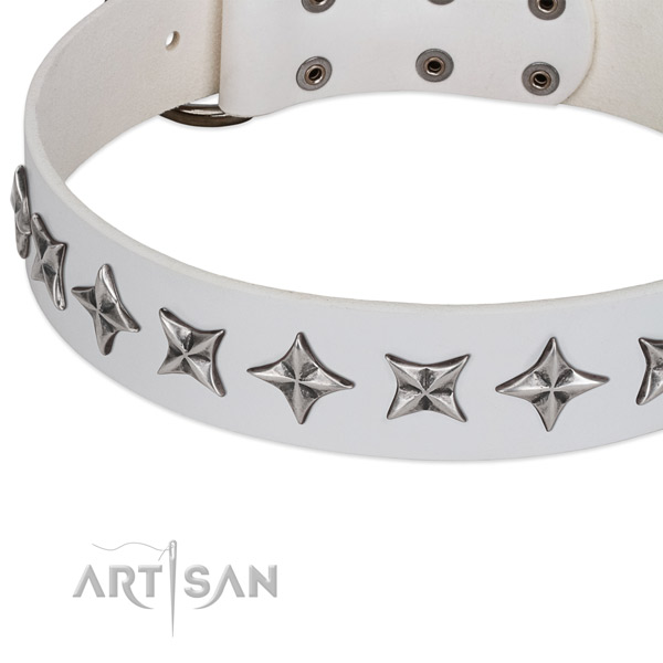 Everyday walking embellished dog collar of best quality natural leather