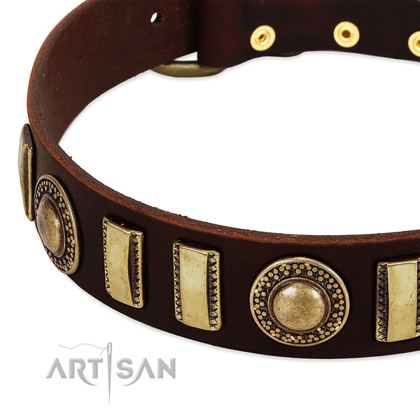 Reliable natural leather dog collar with corrosion resistant traditional buckle