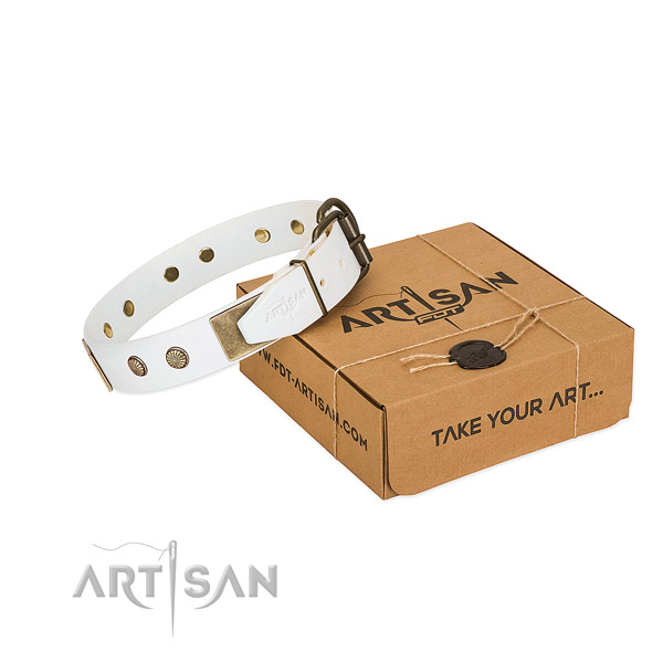 Rust resistant buckle on dog collar for handy use