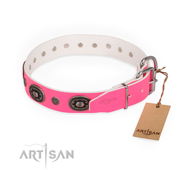 Fancy walking handmade dog collar with corrosion proof buckle