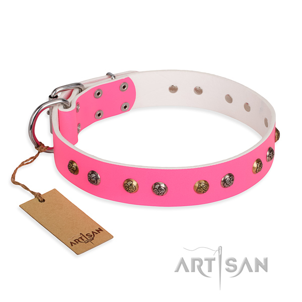 Everyday use easy to adjust dog collar with corrosion resistant fittings