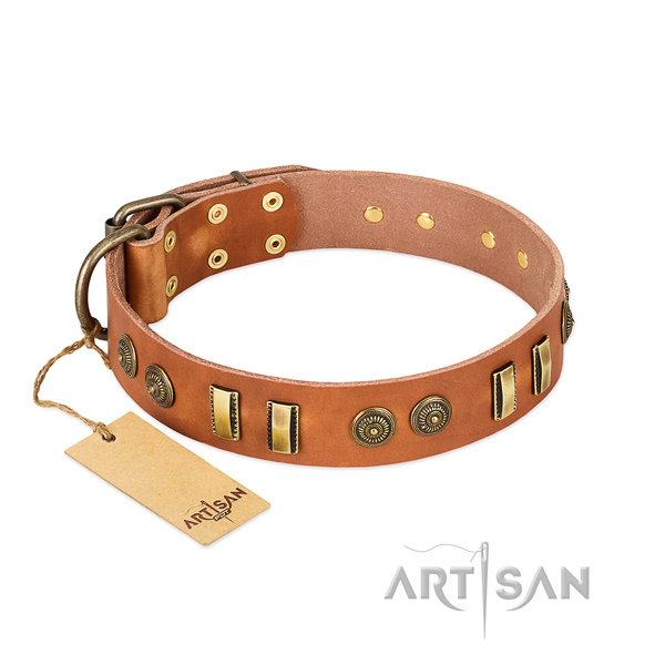 Reliable hardware on leather dog collar for your pet