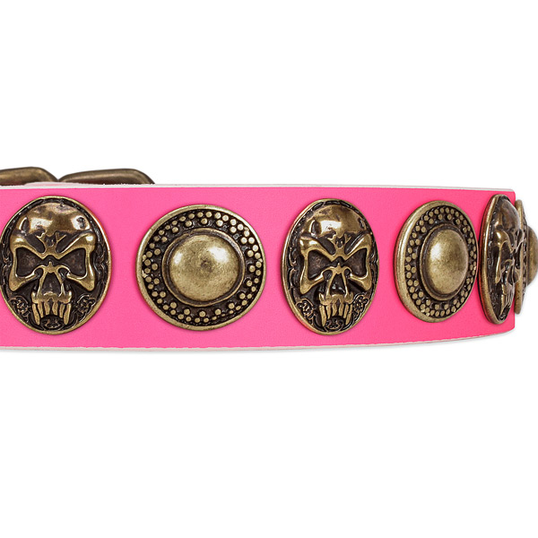 Rust-proof traditional buckle on leather dog collar for your pet