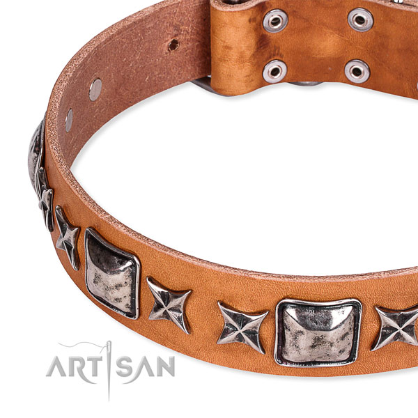 Stylish walking adorned dog collar of durable full grain genuine leather