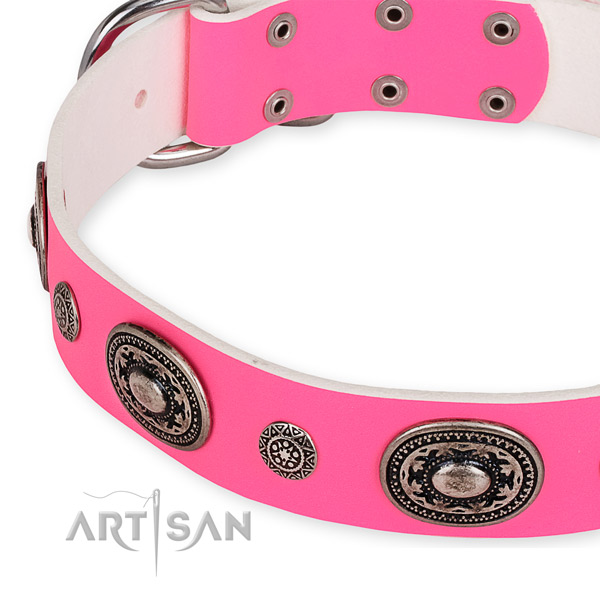 Genuine leather dog collar with stunning corrosion proof adornments