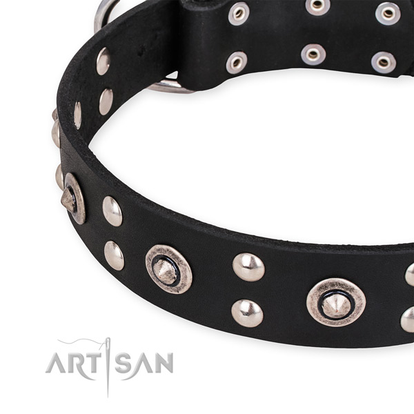 Full grain natural leather collar with corrosion resistant hardware for your beautiful canine