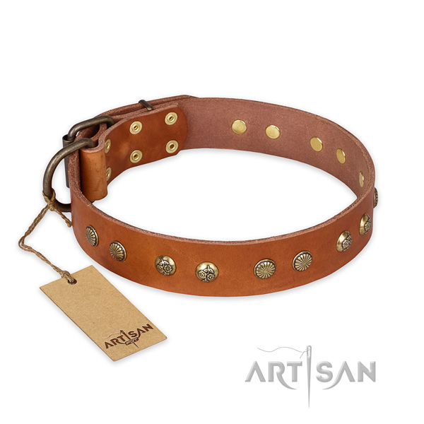 Fine quality leather dog collar with strong traditional buckle