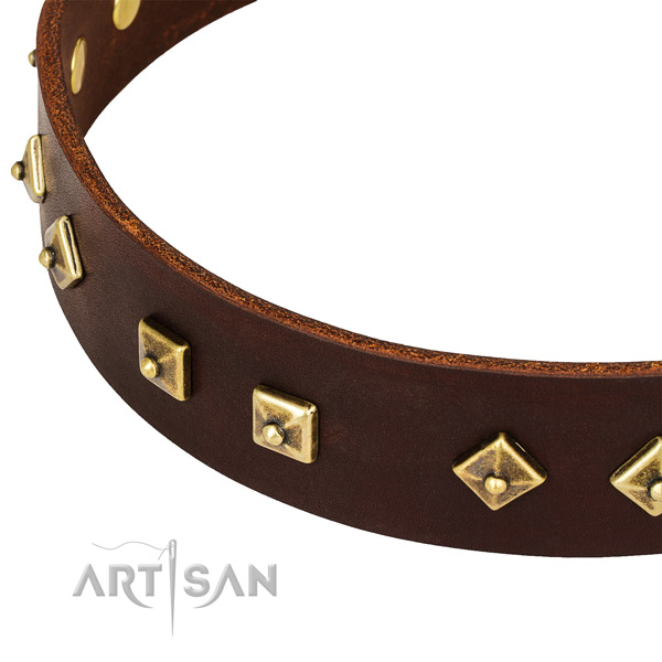 Handmade genuine leather collar for your lovely doggie