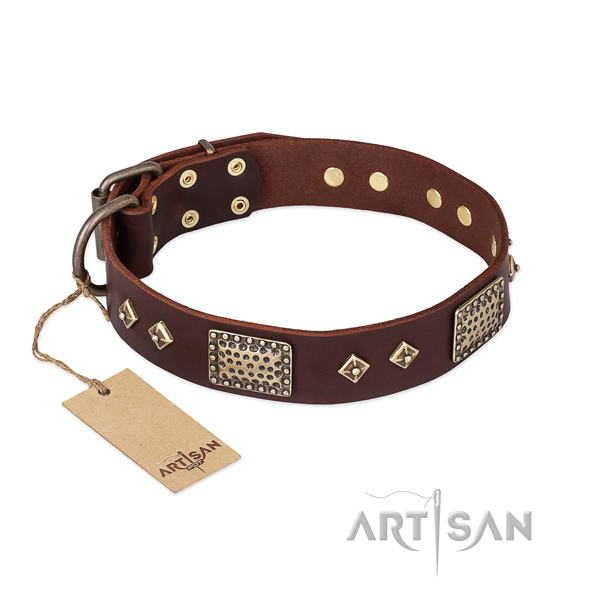 Easy wearing full grain genuine leather dog collar for basic training