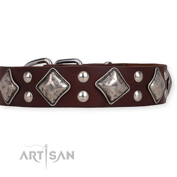 Full grain natural leather dog collar with impressive rust-proof decorations
