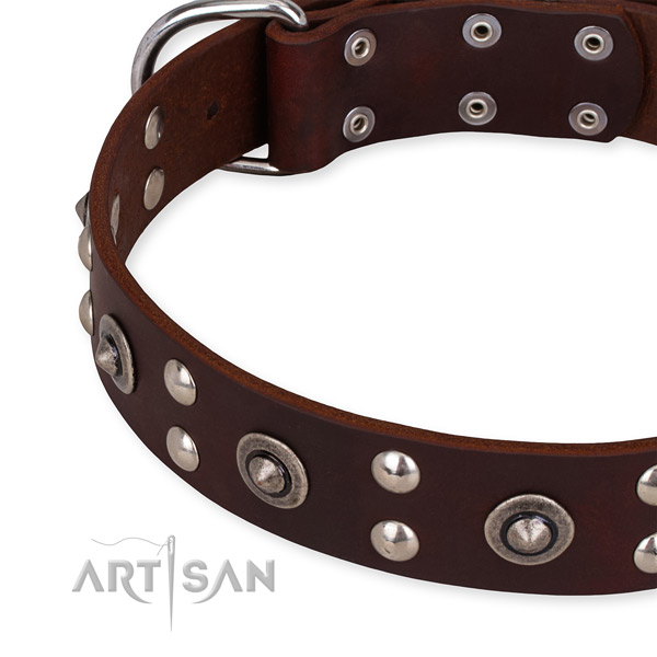 Leather collar with strong traditional buckle for your lovely pet