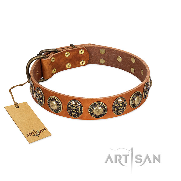 Adjustable full grain leather dog collar for walking your pet