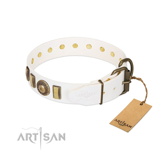 Stunning full grain natural leather dog collar with reliable fittings