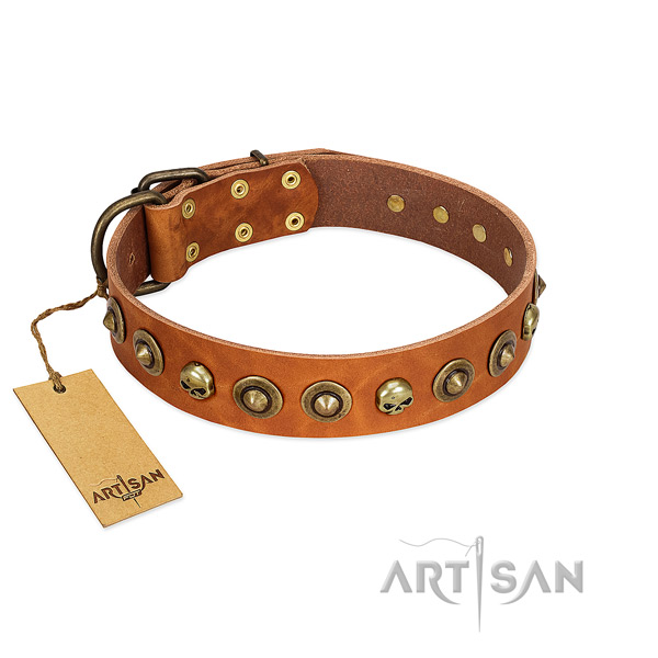 Full grain natural leather collar with impressive decorations for your dog