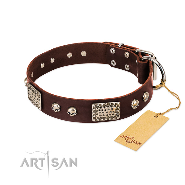 Easy adjustable full grain leather dog collar for everyday walking your dog